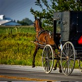 Amish Back Roads Sept.
