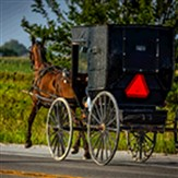 Experience Amish Lifestyle