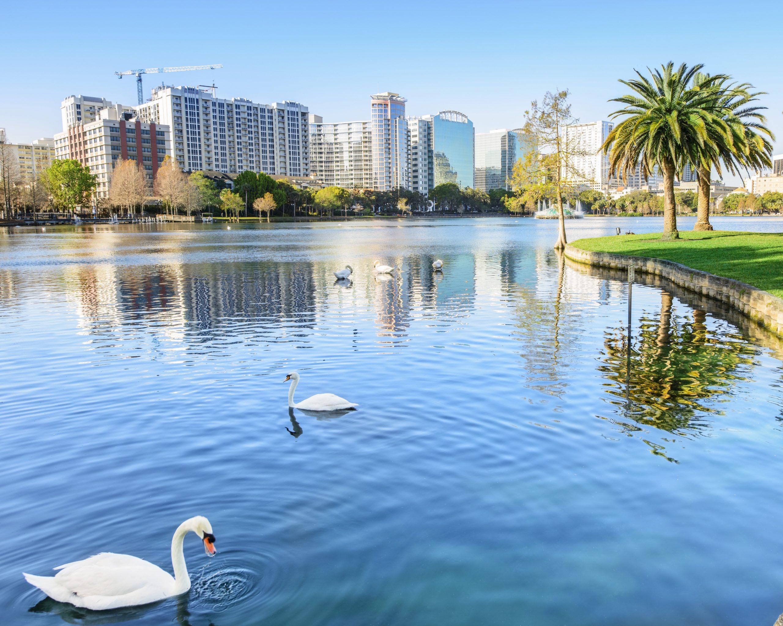 Florida Holiday Escape